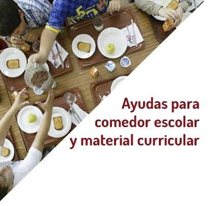 AYUDAS DE COMEDOR ESCOLAR Y DE MATERIALES CURRICULARES PARA EL CURSO ...